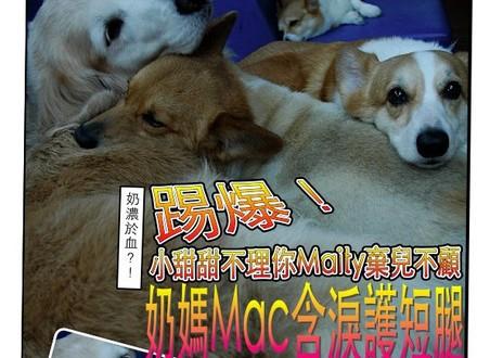 9週刊創刊號:生不如養?奶濃於血?