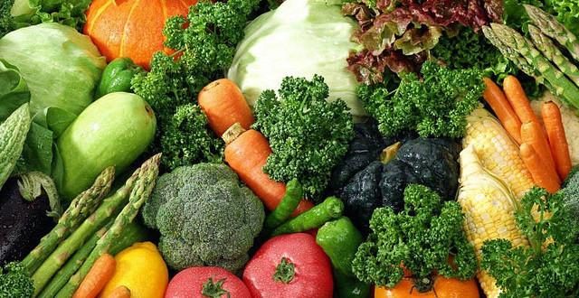 「長期全鮮食可以很健康這件事」,為什麼需要證明一件不需要證明的事?(二)