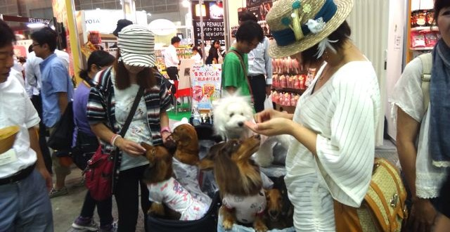 2014年東京寵物展