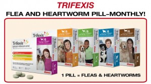 26-heartworm-TRIFEXIS-copy
