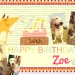 Zoe14thbbday