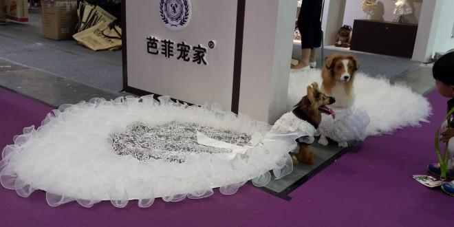 2015年上海亞洲寵物展