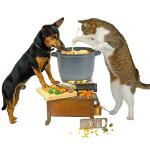 犬貓煮鮮食