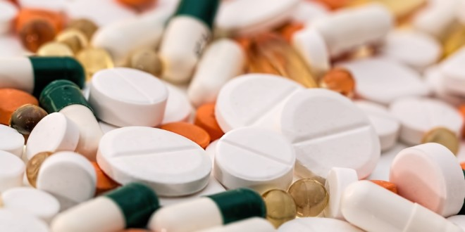 流感季節來臨,小心感冒藥物對毛孩有毒