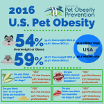 2016-US-Pet-Obesity-Infographic