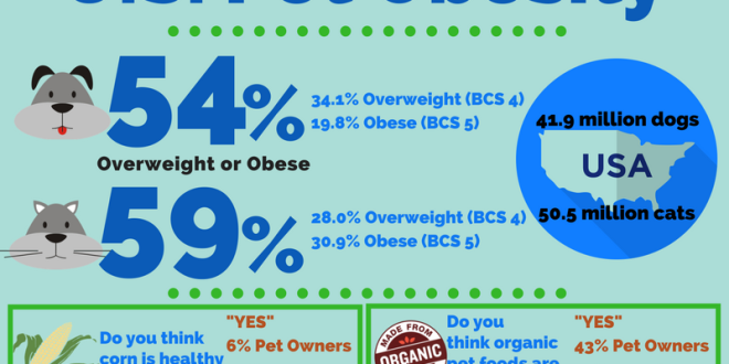 從美國2016年寵物肥胖調查結果看毛孩家長與獸醫間最遙遠的距離
