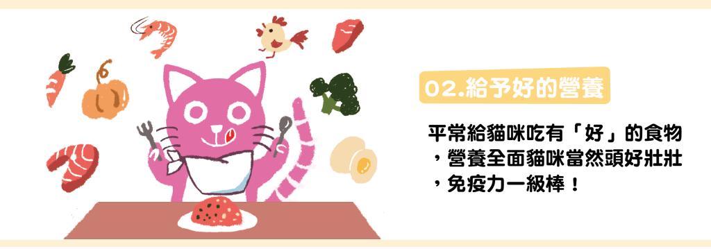 貓咪口炎-03