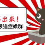貓下泌尿道感染症候群