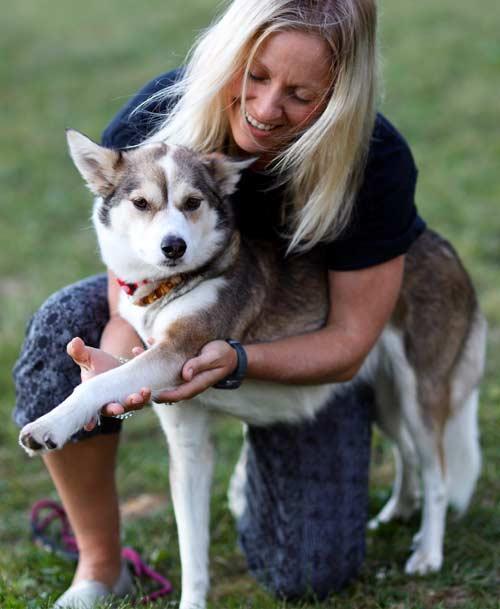 dog-shoulder-stretch
