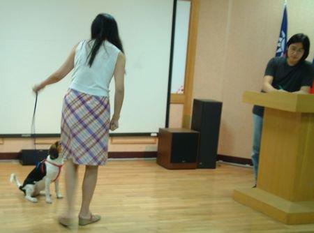 第一屆狗醫生幼幼班的緣起